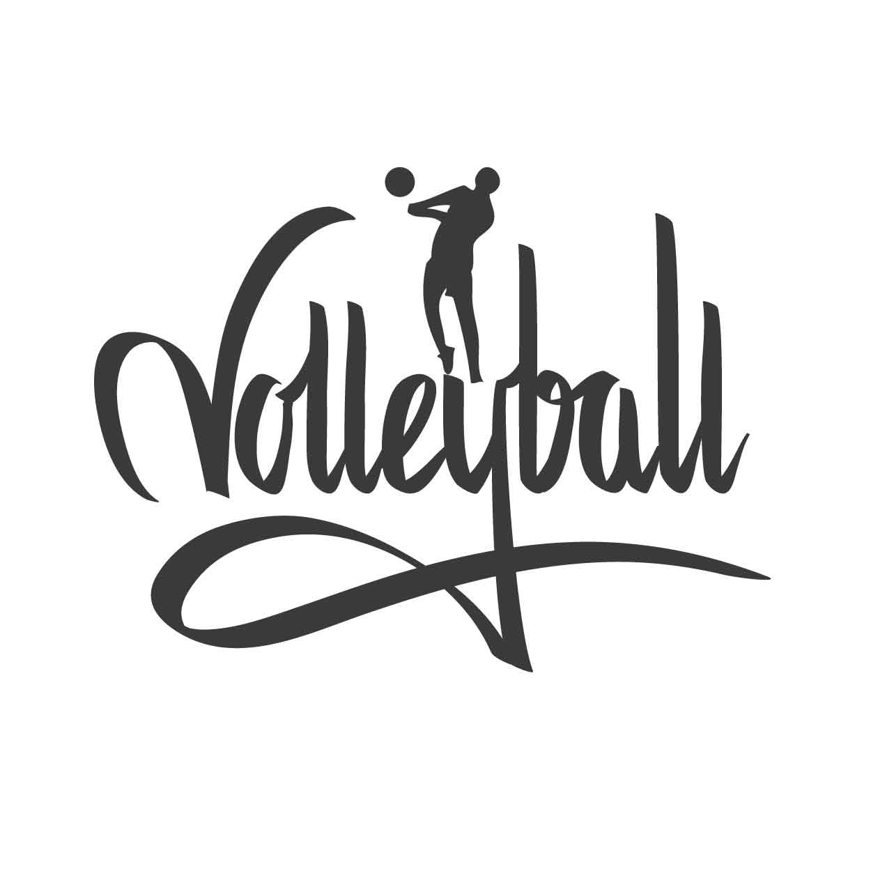 volleyball signature